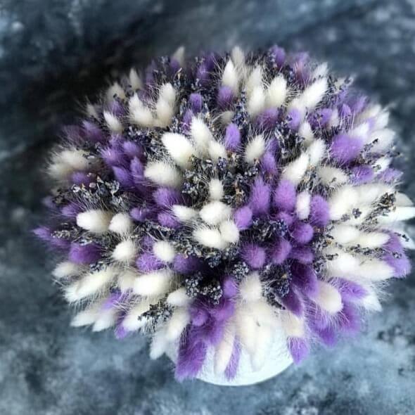 Букет из сухоцветов «туман»