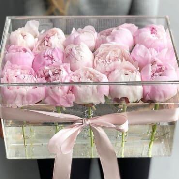 15 розовых пионов в прозрачном боксе с водой