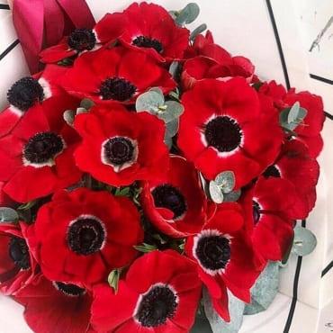 букет из 19 красных анемонов