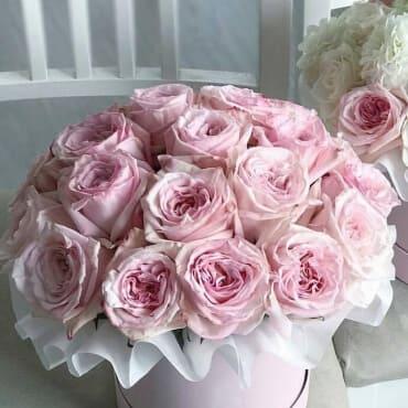 """Букет из 23 роз О""""хара в шляпной коробке"""